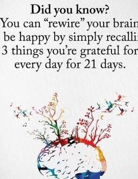 Δεν είναι ωραία ιδέα να γράψεις πριν κοιμηθείς αυτά που σ έκαναν μέσα στη μέρα να νιώσεις ευγνωμοσύνη; 🙏🏻#womannowgr #betterlife #happyme #brain #dailyroutine #happiness💕