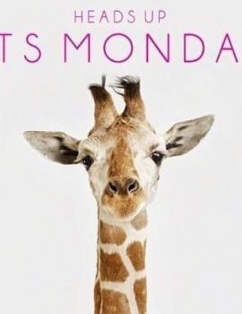 Καθόλου δεν μας πειράζει που είναι Δευτέρα σήμερα! Και φυσικά σηκώνουμε ψηλά το κεφάλι με χαρά και προσμονή για το μέλλον (και το τέλος της εβδομάδας που είναι Πάσχα!)🎉Καλημέρα! ————————-• #womannowgr #mondaymood #goodmorning #itsmonday #vacations #easter #giraffe #happyday #loveyourself