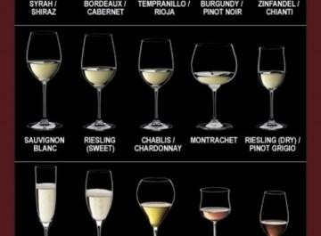 Ποιο είναι το κατάλληλο ποτήρι για κάθε είδος κρασιού