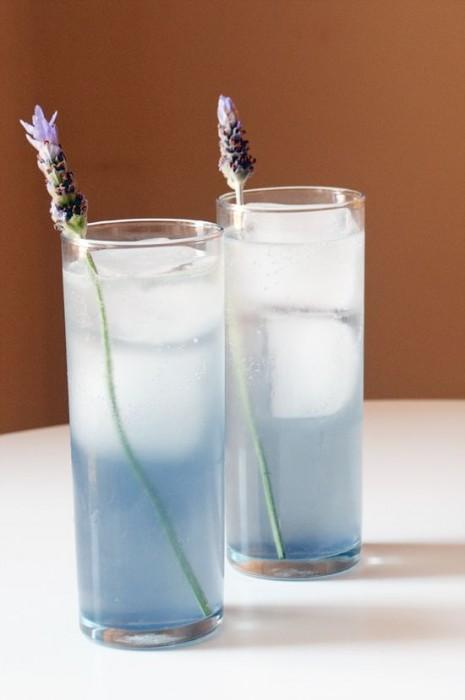 lavender collins coctails